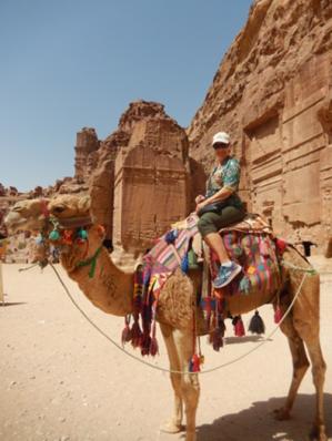 Stretch camel